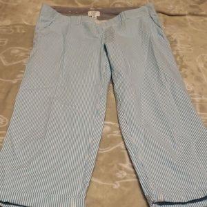 Crown & Ivy crop pants